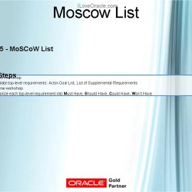 Functional Consultant Launch Formula – Requirements Phase – MoSCoW List